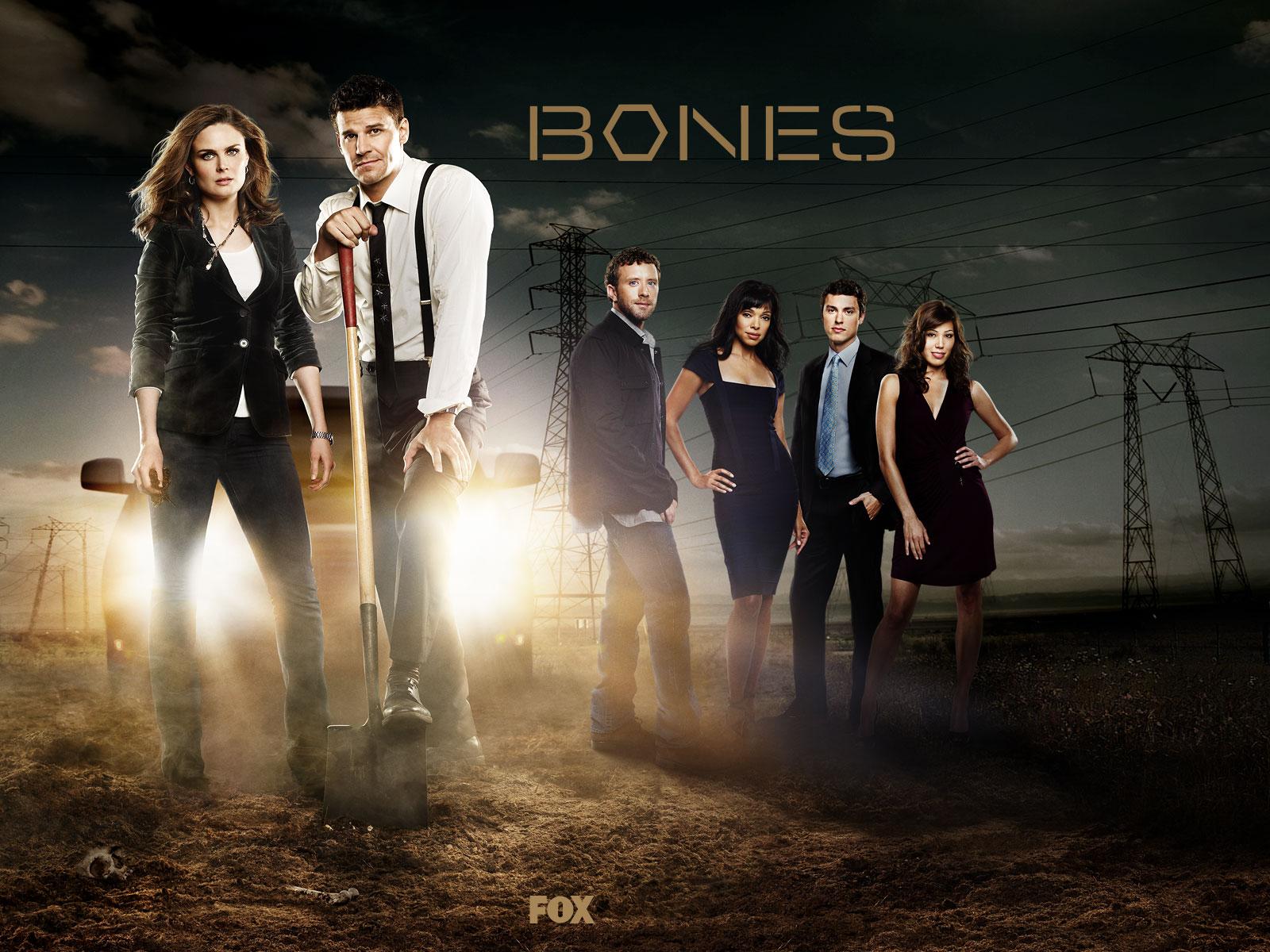 Bones   Season 1-8