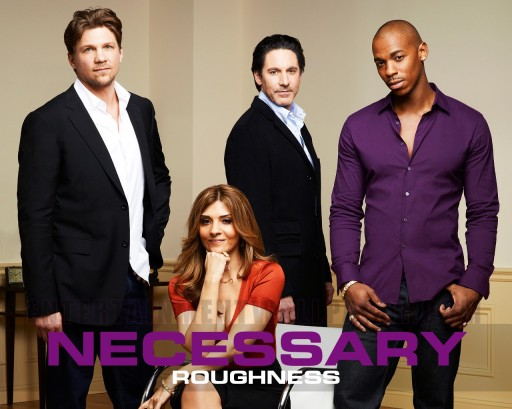 tv-necessary-roughness